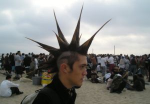 351208_dude_with_mohawk
